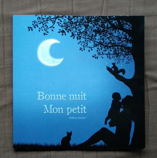Mon livre Bonne Nuit mon petit, un livre pour les enfants pour aborder le coucher, avec des illustrations très douces