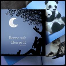 Mon livre jeunesse Bonne nuit mon petit