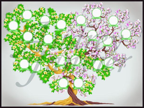 Je réalise votre arbre généalogique sur mesure. Un arbre élégant, original, unique