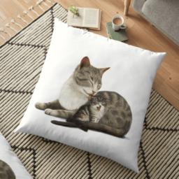 Image-promo_redbubble-coussin-chat-Collection Bonne nuit mon petit