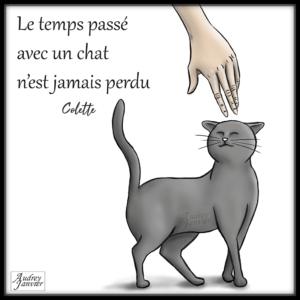 Illustration Le temps passé avec un chat n'est jamais perdu Colette Citation Pensee positive cat