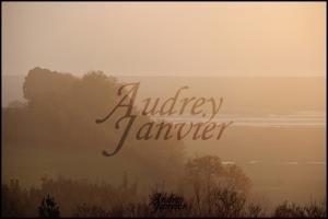 Photo Audrey Janvier Royans Aquitaine Photographie