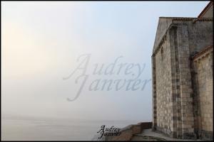 Talmont (9) Aquitaine©Photos Audrey Janvier